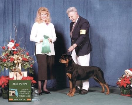 Best Puppy - Gulfstream Rottweiler Club Specialty